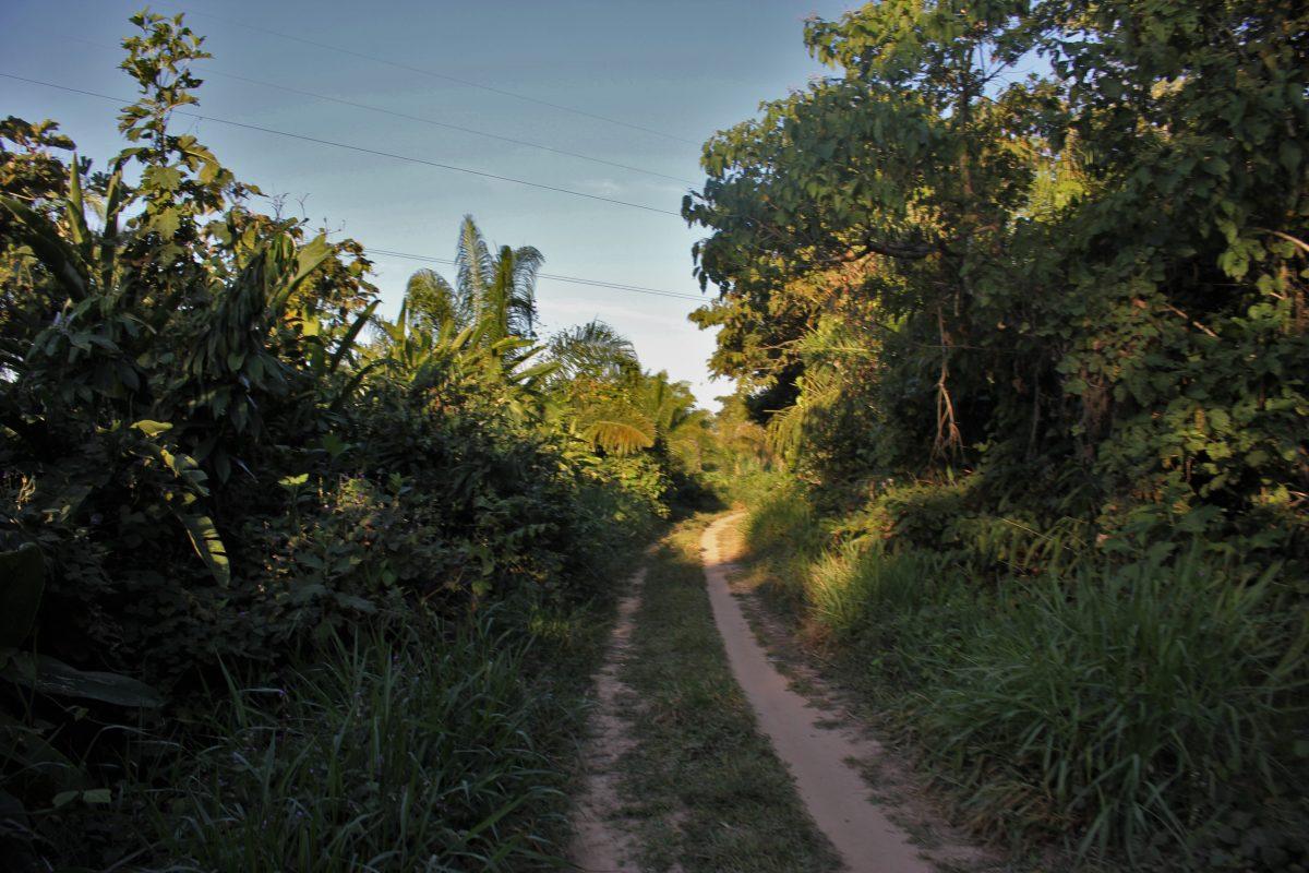 road leaving.jpg