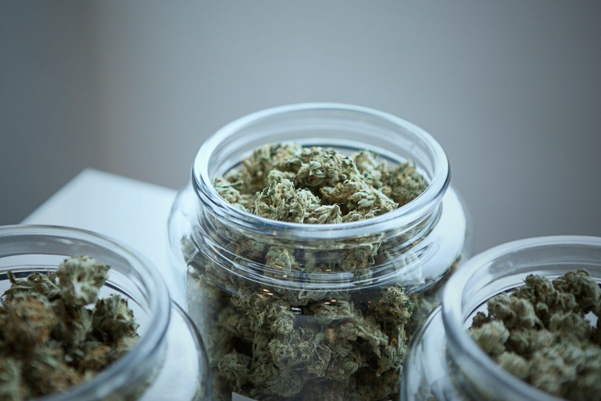 weed jars cannabis marijuana