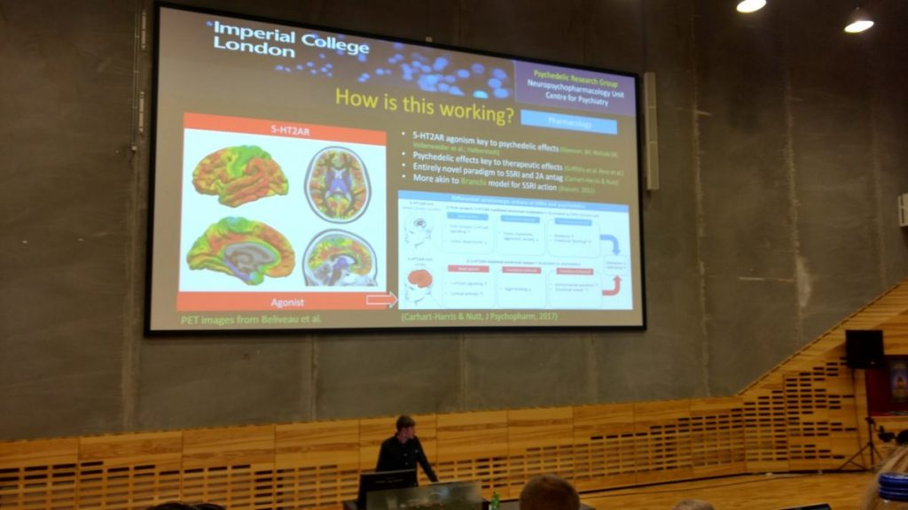 Robin Carhart-Harris psychedelic brain presentation
