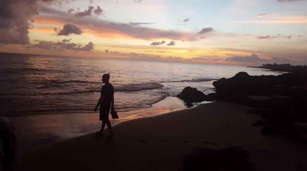 jamaica beach myco meditations