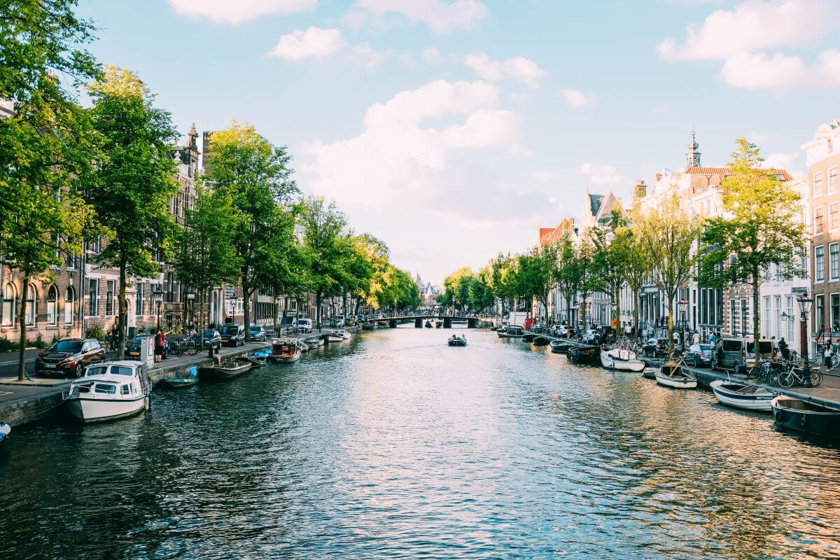 Explorer's Guide: Taking Magic Truffles in Amsterdam (& The