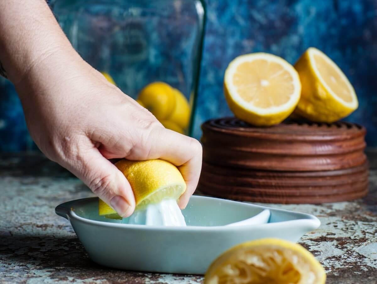 lemon tek psilocybin psilocin truffles
