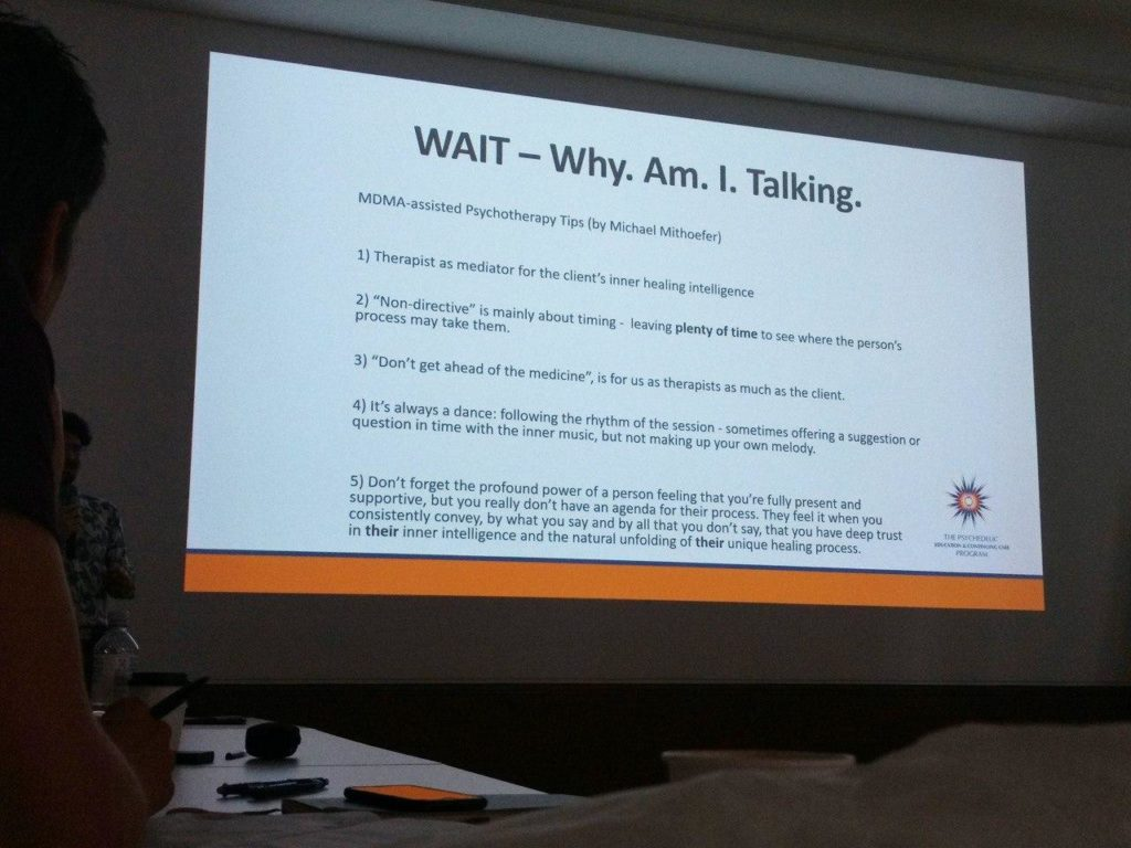 wait acronym psychedelic therapy ingmar integration workshop