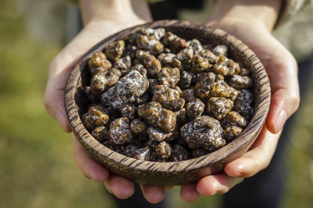 psilocybin magic truffles