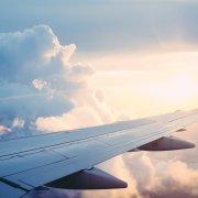 flight sky instructions psilocybin bill richards