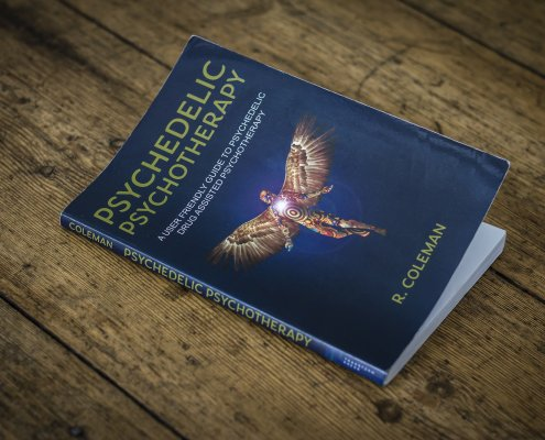 psychedelic psychotherapy book tripsitting guidelines